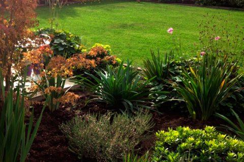 Paisajismo Y Jardines Muva - Paisajismo-jardines